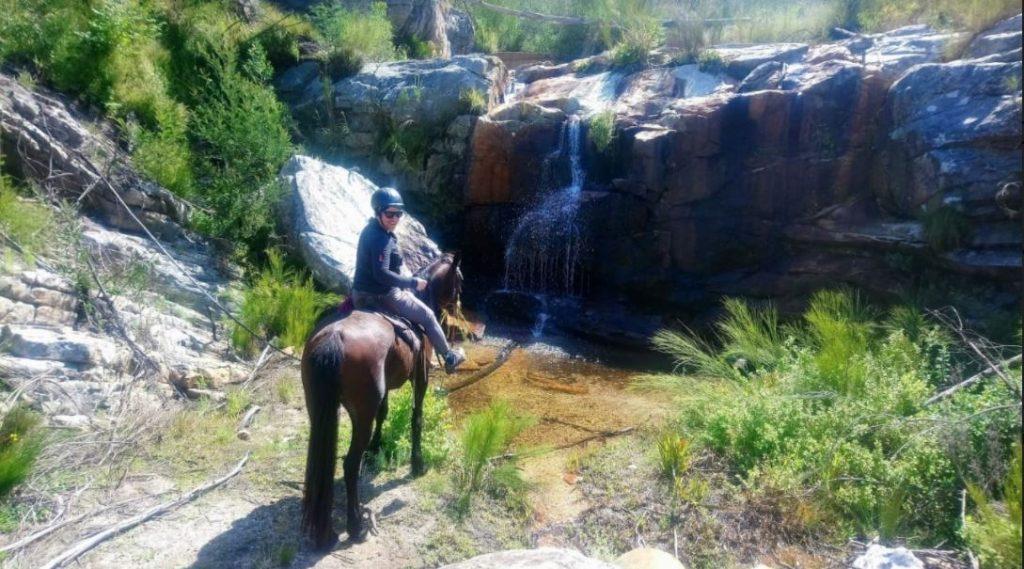 horse-ride-garden-route