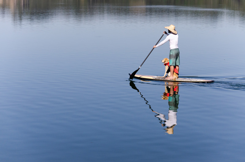 stand-up-paddle-knysna