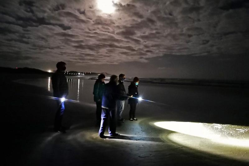 moonlight-meander-sedgefield